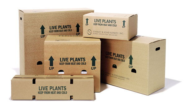 Shipping boxes form stanley and sons nursery